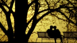 Lovers_park_bench_netbook_backgrounds